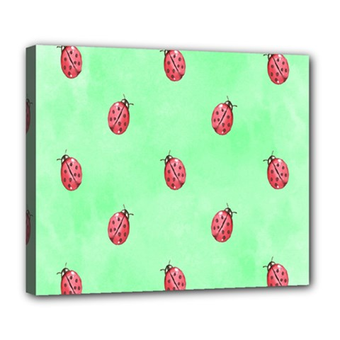 Pretty Background With A Ladybird Image Deluxe Canvas 24  x 20