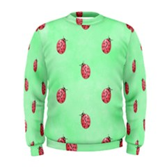 Pretty Background With A Ladybird Image Men s Sweatshirt