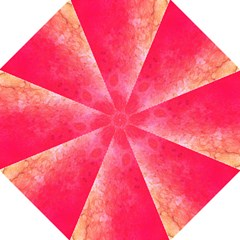 Abstract Red And Gold Ink Blot Gradient Straight Umbrellas