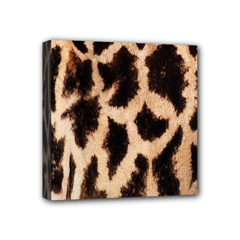 Yellow And Brown Spots On Giraffe Skin Texture Mini Canvas 4  X 4