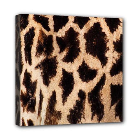 Yellow And Brown Spots On Giraffe Skin Texture Mini Canvas 8  X 8
