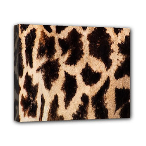 Yellow And Brown Spots On Giraffe Skin Texture Canvas 10  X 8