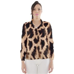 Yellow And Brown Spots On Giraffe Skin Texture Wind Breaker (Women)