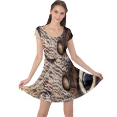 Butterfly Wing Detail Cap Sleeve Dresses