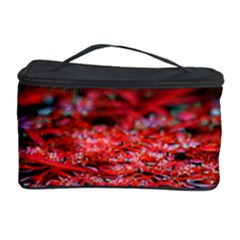 Red Fractal Valley In 3d Glass Frame Cosmetic Storage Case
