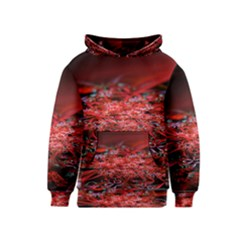 Red Fractal Valley In 3d Glass Frame Kids  Pullover Hoodie