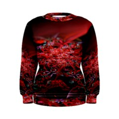 Red Fractal Valley In 3d Glass Frame Women s Sweatshirt