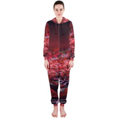 Red Fractal Valley In 3d Glass Frame Hooded Jumpsuit (ladies)