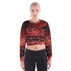Red Fractal Valley In 3d Glass Frame Women s Cropped Sweatshirt