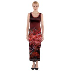 Red Fractal Valley In 3d Glass Frame Fitted Maxi Dress