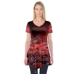 Red Fractal Valley In 3d Glass Frame Short Sleeve Tunic