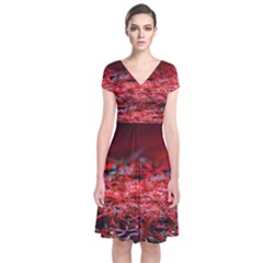 Red Fractal Valley In 3d Glass Frame Short Sleeve Front Wrap Dress