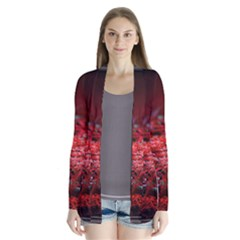 Red Fractal Valley In 3d Glass Frame Cardigans