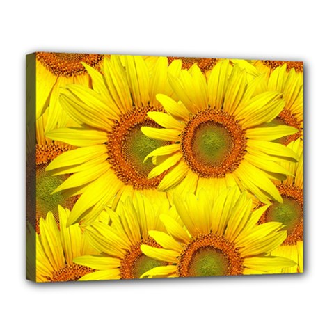 Sunflowers Background Wallpaper Pattern Canvas 14  x 11