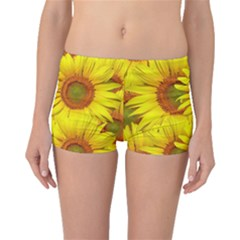Sunflowers Background Wallpaper Pattern Boyleg Bikini Bottoms