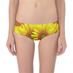 Sunflowers Background Wallpaper Pattern Classic Bikini Bottoms