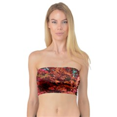 Abstract Fall Trees Saturated With Orange Pink And Turquoise Bandeau Top