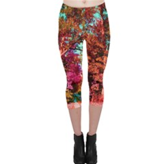 Abstract Fall Trees Saturated With Orange Pink And Turquoise Capri Leggings