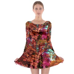 Abstract Fall Trees Saturated With Orange Pink And Turquoise Long Sleeve Skater Dress