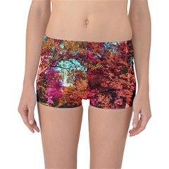 Abstract Fall Trees Saturated With Orange Pink And Turquoise Reversible Bikini Bottoms