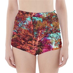 Abstract Fall Trees Saturated With Orange Pink And Turquoise High Waisted Bikini Bottoms