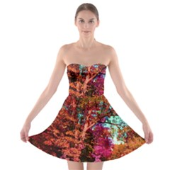 Abstract Fall Trees Saturated With Orange Pink And Turquoise Strapless Bra Top Dress