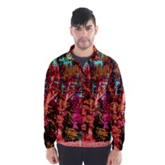 Abstract Fall Trees Saturated With Orange Pink And Turquoise Wind Breaker (men)