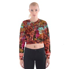 Abstract Fall Trees Saturated With Orange Pink And Turquoise Cropped Sweatshirt