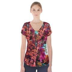 Abstract Fall Trees Saturated With Orange Pink And Turquoise Short Sleeve Front Detail Top