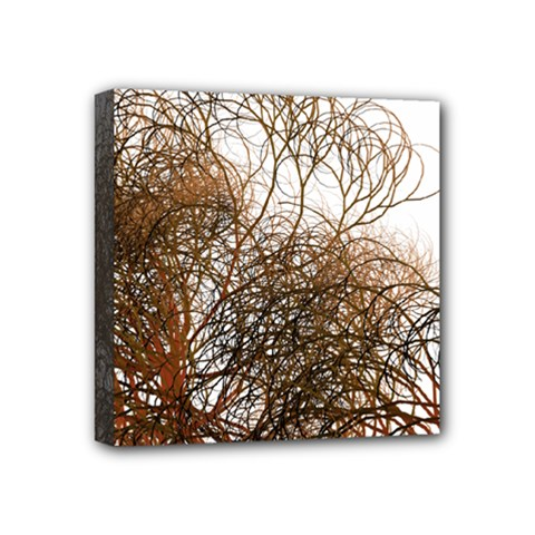 Digitally Painted Colourful Winter Branches Illustration Mini Canvas 4  x 4