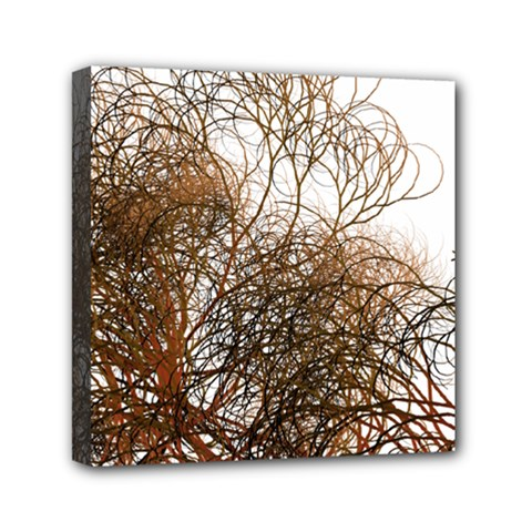 Digitally Painted Colourful Winter Branches Illustration Mini Canvas 6  X 6