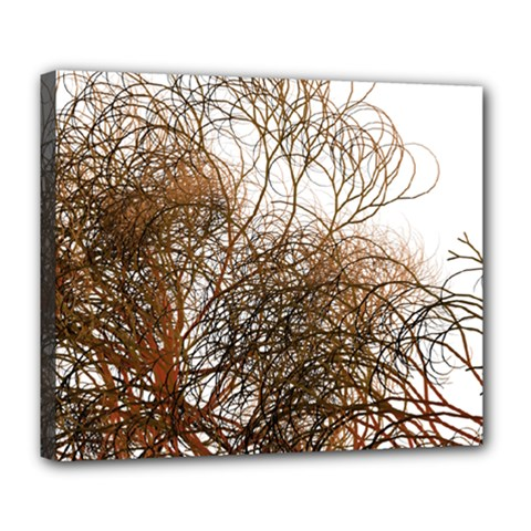 Digitally Painted Colourful Winter Branches Illustration Deluxe Canvas 24  x 20
