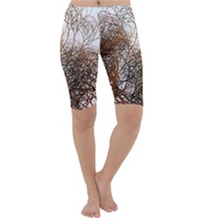 Digitally Painted Colourful Winter Branches Illustration Cropped Leggings