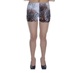 Digitally Painted Colourful Winter Branches Illustration Skinny Shorts