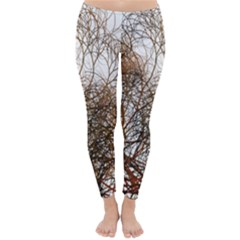 Digitally Painted Colourful Winter Branches Illustration Classic Winter Leggings
