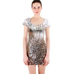 Digitally Painted Colourful Winter Branches Illustration Short Sleeve Bodycon Dress