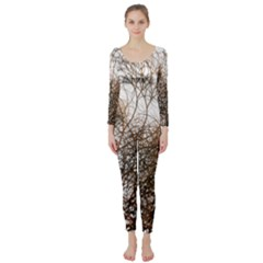 Digitally Painted Colourful Winter Branches Illustration Long Sleeve Catsuit