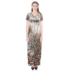 Digitally Painted Colourful Winter Branches Illustration Short Sleeve Maxi Dress