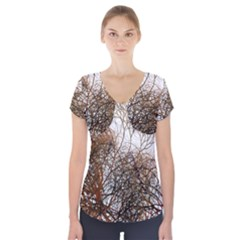 Digitally Painted Colourful Winter Branches Illustration Short Sleeve Front Detail Top