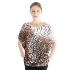 Digitally Painted Colourful Winter Branches Illustration Blouse
