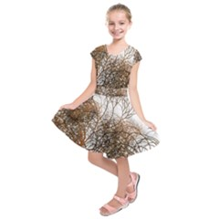 Digitally Painted Colourful Winter Branches Illustration Kids  Short Sleeve Dress