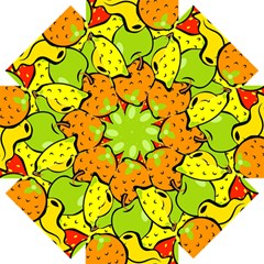 Digitally Created Funky Fruit Wallpaper Straight Umbrellas