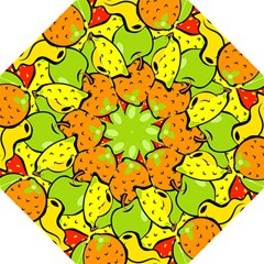 Digitally Created Funky Fruit Wallpaper Hook Handle Umbrellas (Medium)