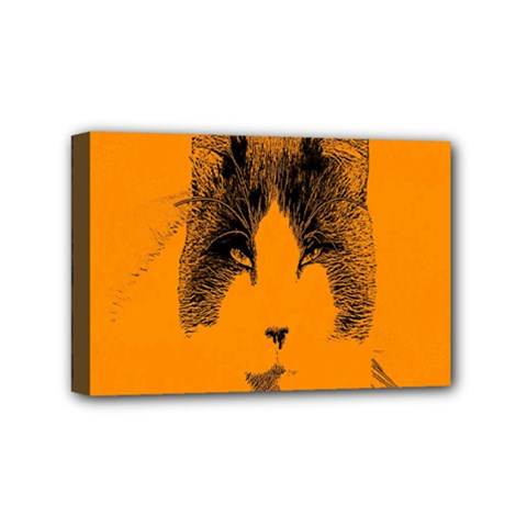 Cat Graphic Art Mini Canvas 6  X 4
