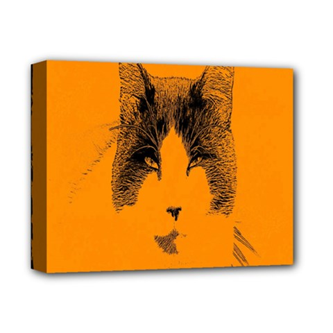 Cat Graphic Art Deluxe Canvas 14  x 11