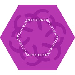 Zodiac Capricorn Purple Mini Folding Umbrellas