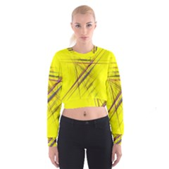 Fractal Color Parallel Lines On Gold Background Cropped Sweatshirt