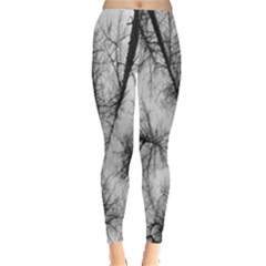 Trees Without Leaves Leggings