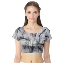Trees Without Leaves Short Sleeve Crop Top (tight Fit)