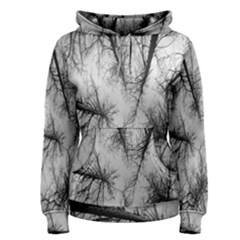 Trees Without Leaves Women s Pullover Hoodie